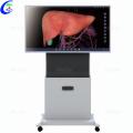 Touch Screen 3D Anatomy System