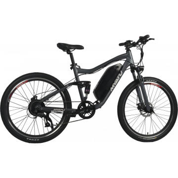 Green Power Mountain Electric Bike