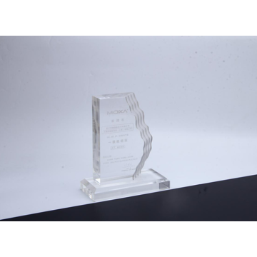 Sculpted Wave Acrylic Award