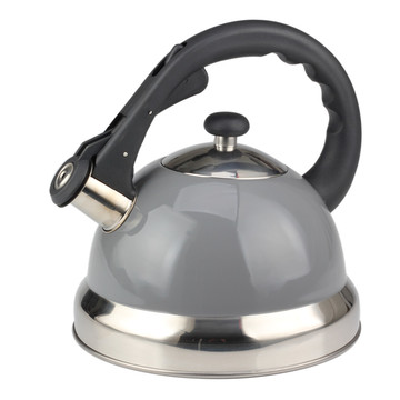 Fastest Boiling Surgical Stainless Steel Tea Kettle