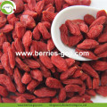 Low Sugar Natural Nutrition Sweet Conventional Goji Berry