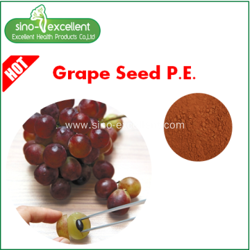 Grape Seed Extract