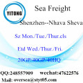 Shenzhen Port Sea Freight Shipping To Nhava Sheva
