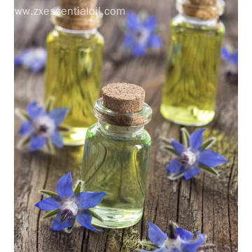 Wholesale borage oil bulk price top quality OEM