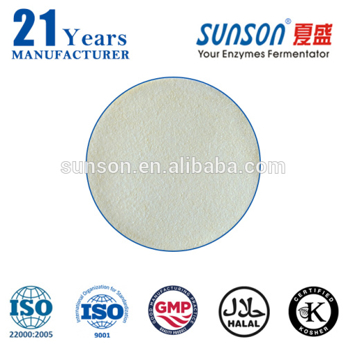Food grade baking enzyme industrial lipase for flour