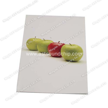 Greeting Cards, Music Greeting Card, Speaking Greeting Cards