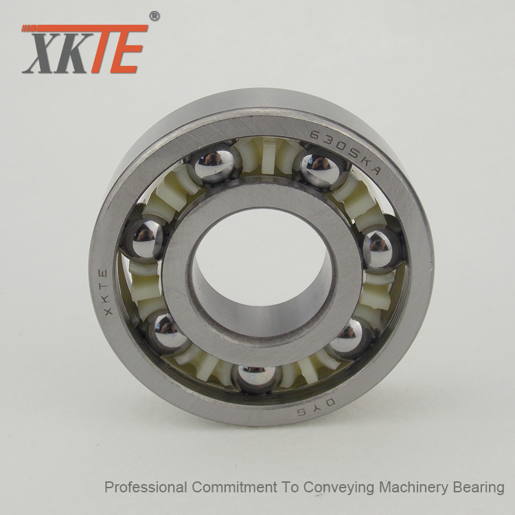 Seize-Resistant Polyamide Cage BB1B420305 C3 Bearing For Conveyor