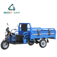 3 wheel adults cargo electric tricycle