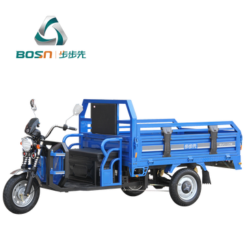 Adult low price heavy load electric cargo trike