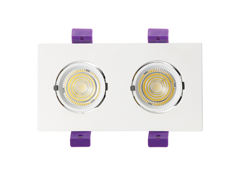 led trunk downlight with two lamp