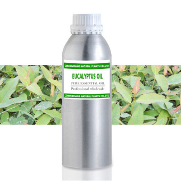 Wholesale100% therapeutic grade eucalyptus essential oil