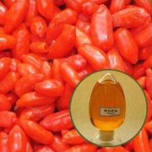 Goji Berries Seed Oil