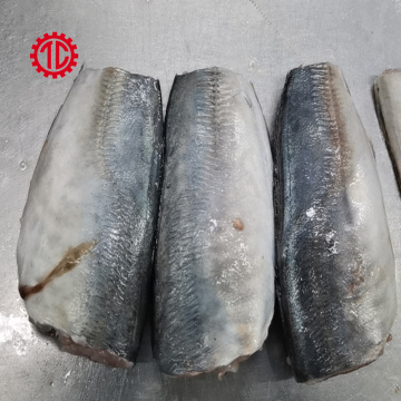 Export And Import Canned Mackerel Fish in Vegetable Oil