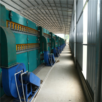 1 Deck Roller Veneer Drying Line