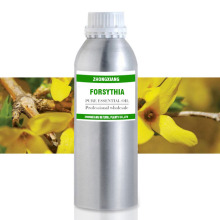 100% pure natural weeping forsythia essential oil wholesale