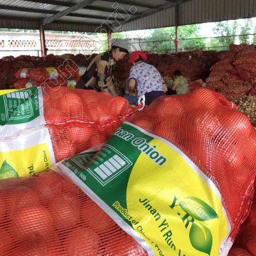Better Fresh Onions Export with lower Prices