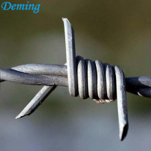 Barbed Wire Used As Barrier Protact For Lawn