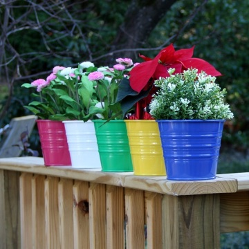 Metal Bucket Planters Pot Assorted Colors Set