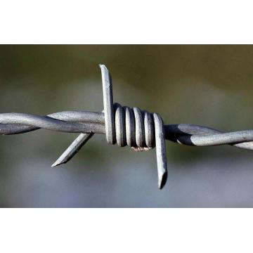 Galvanized barbed wire price per roll barbed fence