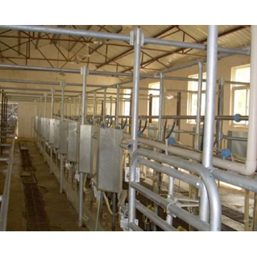 Full automatic rotating milking parlor