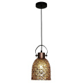 Fashion Indoor Lighting Suspension E27 Pendant Lamp