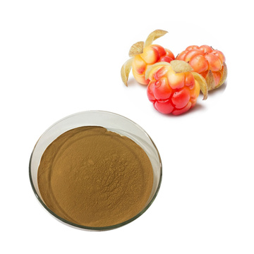 Food Grade Bulk cloudberry extract rubus chamaemorus extract
