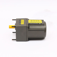 AC Motor 25W 80mm Small AC Gear Motor