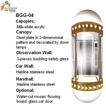Capsule Elevator for Passenger Transportation