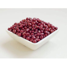 Red Beans Nutrition for Sale