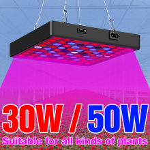 Growth Light LED Grow Lamp 30W 50W Full Spectrum LED Plant Lighting Fitolampy AC100-277V For Phyto Flowers Seedling Cultivation