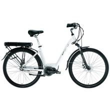 Travel Leisure Electric Bike
