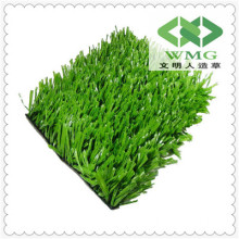 Wm Good Quality Decorative Grass and More Natural Garden Grass