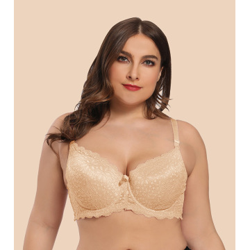 In-stock plus size lace mould cup bra