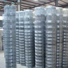 Cattle Mesh Fence/Farm Fencing Wire/Hinge Joint Field Fence