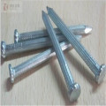 Modern Coil Wire Nail Stainless Steel Concrete Nail