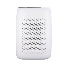 Allergies Removable WiFi HEPA Air Purifier