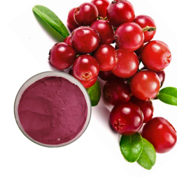 Organic Natural Anti Oxidant Cranberry Extract powder