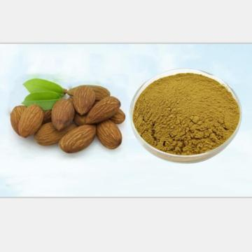 Vitamin B17 Supply Pure Bitter Apricot Seed 30:1 Extract Pow-der, Anti-aging Anti-can cer,Almond Apricot Kernel 200g-1000g