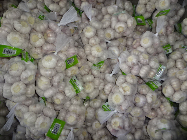 High Quality Crop 2019 Normal Garlic