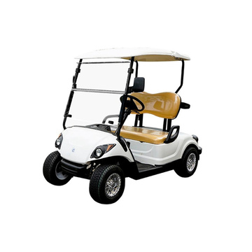 48V3KW 2 seater high performance electric golf cart