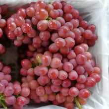 Food Fruits Red Grape Fresh