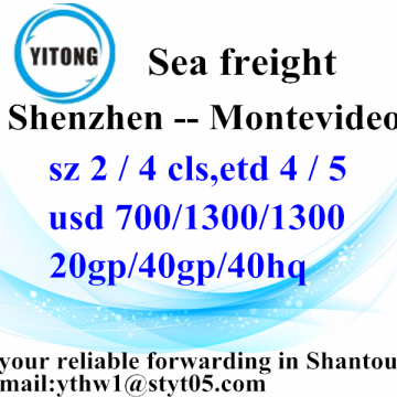 Shenzhen Ocean Freight Shipping Services to Montevideo