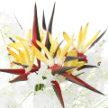 Single small paradise bird fake flower real flower touch bouquet soft plastic flower color bird of paradise dried flower decorat