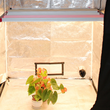 Led plant grow light with multiple bar