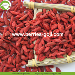 Factory Supply Nutrition Dried Lycium Chinense