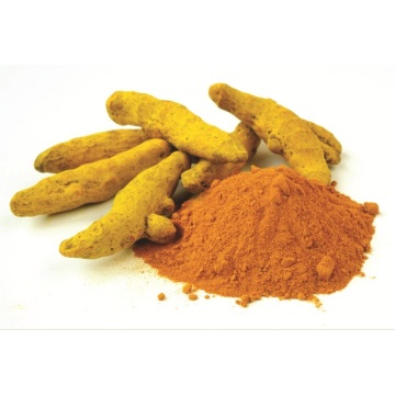 Curcumin Yellow Natural Color Turmeric Yellow Pigment