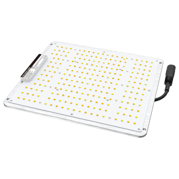 Full spectrum 100W led panel grow light indoor veg