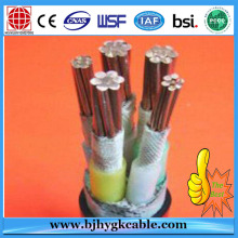 1KV Copper Conductor Construction Application Low Volt cable