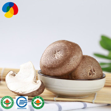 Edible Organic Fresh Shiitake Mushrooms