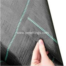 Black Bround Cover Fabric with 30cm Green line